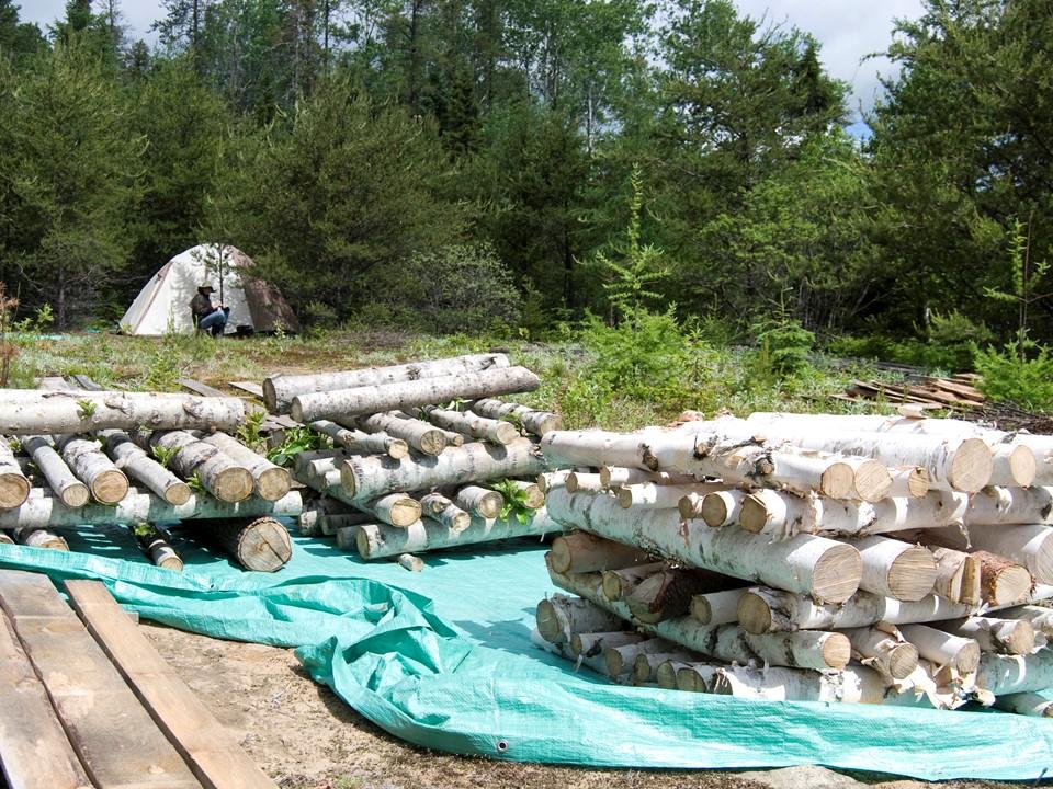 Plan d'intervention écoforestier en permaculture végétale. Conception de forêts nourricières en territoire nordique. St-Zénon. 2016.