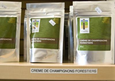 Crème de champignons forestiers