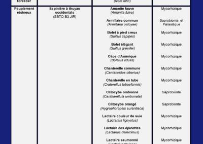Étude de caractérisation: champignons sauvages présents par peulements forestiers