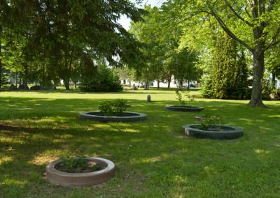 Le jardin de PFNL. St-Édouard-de-Maskinongé, 2012.